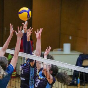 OD Krim : GEN-I Volley 14. krog